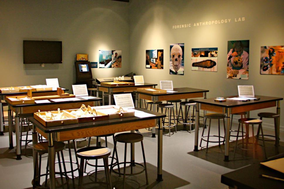 Forensic Anthropology Lab.