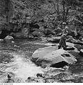 Fotothek df ps 0001689 Landschaften ^ Flußlandschaften ^ Angler.jpg