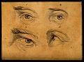Four eyes. Drawing, c. 1794. Wellcome V0009239ER.jpg