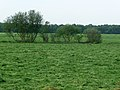 Fresh mowed grass fields in Drenthe.jpg