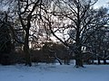 Frozen pond - geograph.org.uk - 1657966.jpg