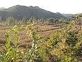 Funing, Qinhuangdao, Hebei, China - panoramio (5).jpg