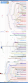 GNU-Linux distro timeline 10 9.png