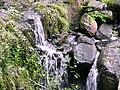 Ganllwyd NNR - panoramio (8).jpg