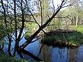 Garkalnes novads, Latvia - panoramio (9).jpg