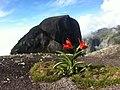 Garrafao - panoramio.jpg