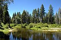 General Creek at Sugar Pine Point State Park.jpg