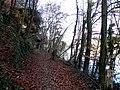 Geneve, Promenade le long du Rhone - panoramio (39).jpg