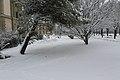 Geneve Sous la neige - 2013 - panoramio (27).jpg