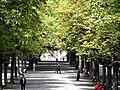 Geneve parc Bastions 2011-08-05 13 14 17 PICT0110.JPG