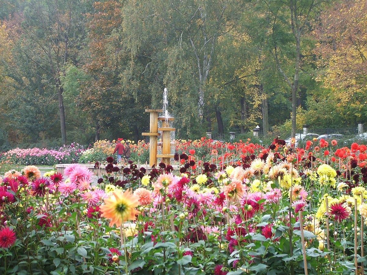 Dahliengarten Hamburg
