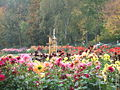 Gera Dahliengarten.JPG