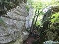 Gespaltener Fels Schwaebische Alb.jpg