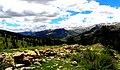 Gevne vadisi - panoramio (8).jpg