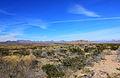 Gfp-texas-big-bend-national-park-desert-scenery.jpg