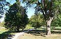 Gilman Park (Pierce, Nebraska) arboretum 2.JPG