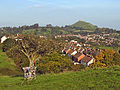 Glastonbury Thorn and Tor.jpg