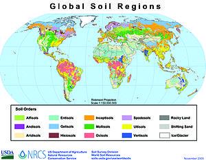 Usda soil taxonomy wikipedia the free encyclopedia for Properties of soil wikipedia