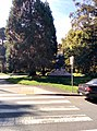 Golden Gate Park - panoramio (5).jpg