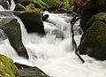 Golitha Falls 2.jpg