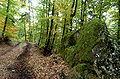 Grafenstein Skarbin Waldweg Felsnische ohne Bild 0404102007 84.jpg