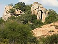Granite Koppies - panoramio.jpg