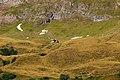 Graslandschaft - panoramio.jpg