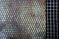 Grid (14334540648).jpg