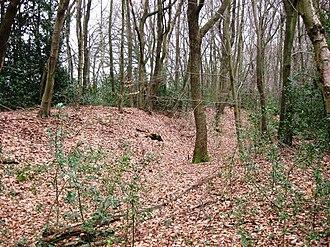 Grim's Ditch (Chilterns) - Grim's Ditch near Hastoe