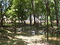 Guanare 2010 019.JPG