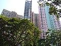 HK 灣仔 Wan Chai Mid-levels 堅尼地道 Kennedy Road September 2019 SSG 06.jpg