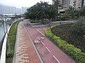 HK Shatin 大涌橋道 Tai Chung Kiu Road view 安景街公園 On King Street Park 單車徑 Bicycle path.jpg