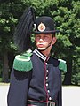 Hans Majestet Kongens Garde - soldier1.JPG