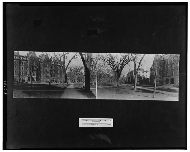 File:Harvard University -5, Cambridge, Mass LCCN2007661034.tif