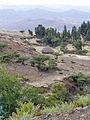 Hauts plateaux d'Ethiopie-Région Amhara (26).jpg