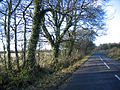 Heading towards Oaksey on the road from Somerford Keynes - geograph.org.uk - 296091.jpg