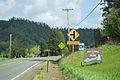 Hebo, Oregon.jpg