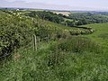 Hedge on Tinhay Down - geograph.org.uk - 458995.jpg