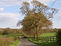 Hedsor Lane - geograph.org.uk - 162890.jpg