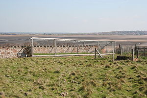 Heligoland trap - A small Heligoland trap on Hilbre Island, Wirral, England