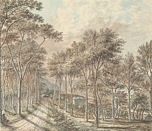 Robert Vaughan (antiquary) - Hengwrt, the seat of the Vaughan family, 1793