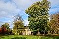 Hexham Park - panoramio.jpg