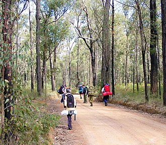 Scout (Scouting) - A group of Australian Scouts hike along a fire trail in a national park.