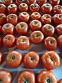 Hillview Farms tomatoes.jpg