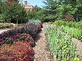Hillwood Gardens in July (14793160824).jpg