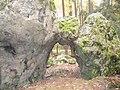 "Hoher Stein ""Durchgang"" - panoramio.jpg"