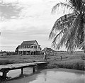 Huis aan een kanaal in Nickerie, Bestanddeelnr 252-5510.jpg