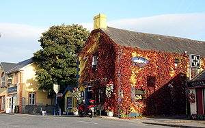 Castleconnell - Castleconnell town centre