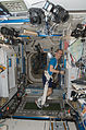 ISS-21 Frank De Winne exercises on the COLBERT treadmill in the Harmony node.jpg