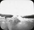 Icebergs (4843354435).jpg